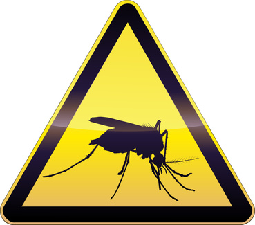 West Nile Viris Alert